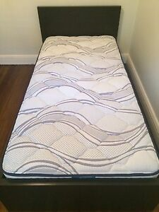 Sealy Single Mattress Bellevue Hill Eastern Suburbs Preview