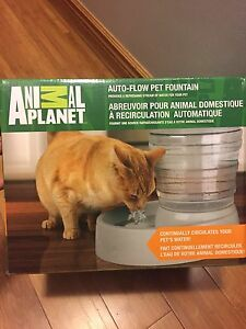 Pet Fountain $25 OBO