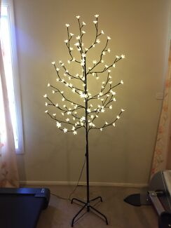 Tree with cherry blossom lights