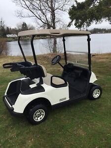 2015 Ezgo RXV48 volt Electric Golf Cart