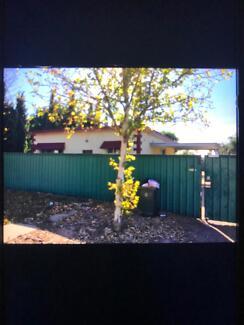 House for rent munno para kudla area if add still up still availa