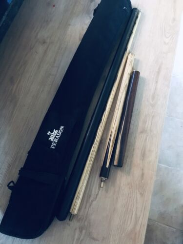Snooker Cue With Extension And Case