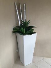 DECORATIVE INDOOR POT WITH PLANTS X2 Attadale Melville Area Preview