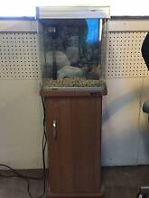 fish tank for free Ingleburn Campbelltown Area Preview