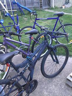 3 bikes $30