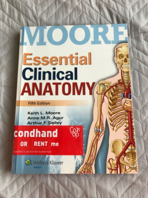 Essential clinical anatomy, 5th edition | Textbooks | Gumtree ...