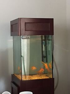 Fish Tank + solid wood stand