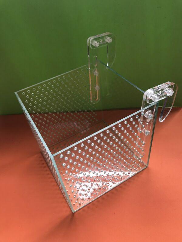 The Cube - Mushroom Anemone Coral Box Bounce Shroom Box