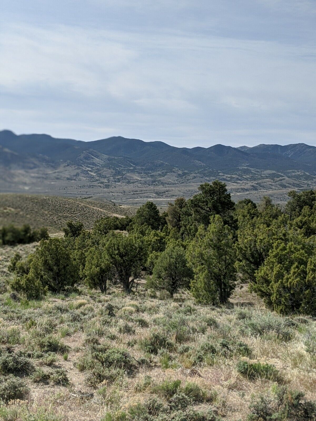 10 Acres Of Nevada Beautiful Treed Land In Elko County, Mountain Air,No Reserve  - $2,700.00