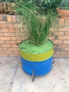 Large industrial vintage retro plant drums planter pots