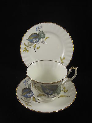 Lovely Staffordshire bone china trio cup saucer plate