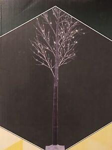 3 Trees with lights  Edmonton Edmonton Area image 1