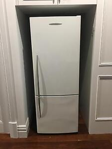Fisher & Paykel Fridge and freezer Maylands Bayswater Area Preview