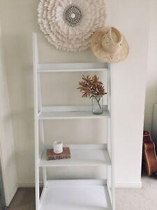 Ladder bookshelf storage shelf