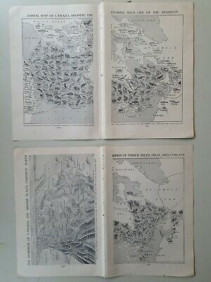 Lot of 1930s Vintage Canada maps animals produce industry plants book pictures