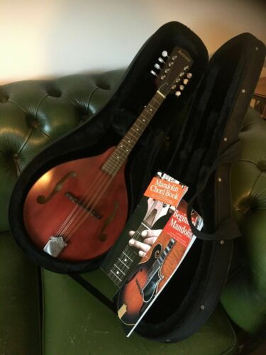 ROSEWOOD ASHBURY AM 50 A STYLE MANDOLIN STRING INSTRUMENT + CASE EXCELLENT U54