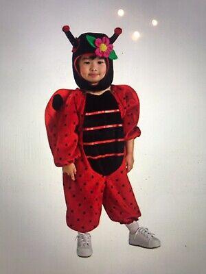 Ladybug Toddler Costume (Infant Toddler Little Lady Ladybug)