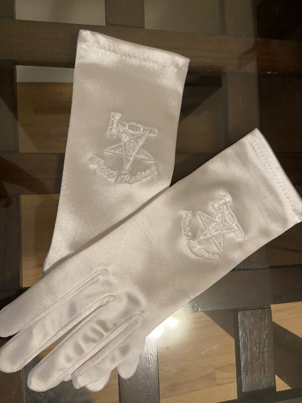 Masonic Past Matron Eastern Star Gloves Stretch Satin Fabric Fits all Sizes