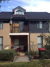 A room is available to rent in townhouse Harris park Harris Park Parramatta Area Preview