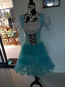 Alice in wonderland dance costume/dress Hope Island Gold Coast North Preview