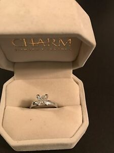 1.5 carat engagement ring and princess cut matching band
