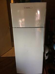 Fisher and Pykel Fridge Northbridge Perth City Area Preview