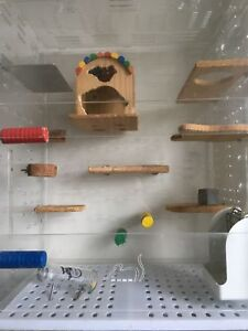 Chinchilla cage and food for sale