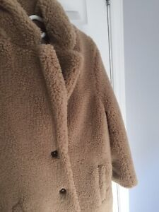 Aritzia The Teddy Cocoon coat