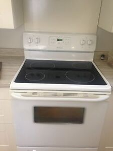Fridgedaire Glass Top Self Cleaning Stove