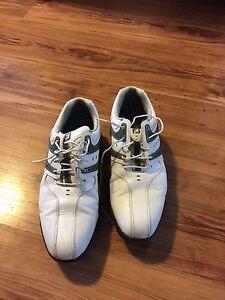 Foot joy dry joy golf shoes