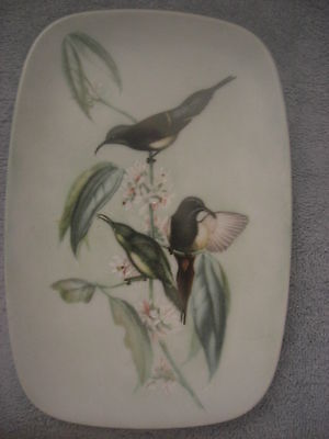 Vintage  RECTANGULAR  Plate with Hummingbirds