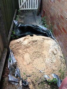 Sand Free Hurstville Hurstville Area Preview
