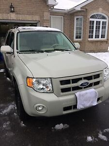 2008 Ford Escape 4WD Limited Edition