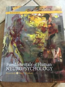 Fundamental of human neuropsychology 90$