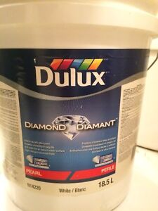 5 gallon DULUX untinted White paint