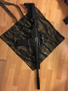 Milsig M17 XDC with tons of extras