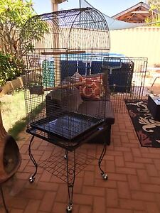 LARGE BIRD CAGE $99! NEGOTIABLE! Cloverdale Belmont Area Preview