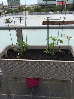 Gumtree Raised Garden Beds Adelaide
