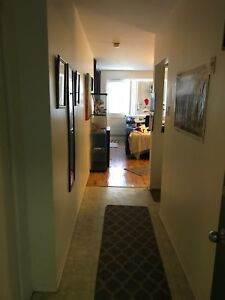 2 & 1/2  Furnished Large loft style apartment; McGill Ghetto