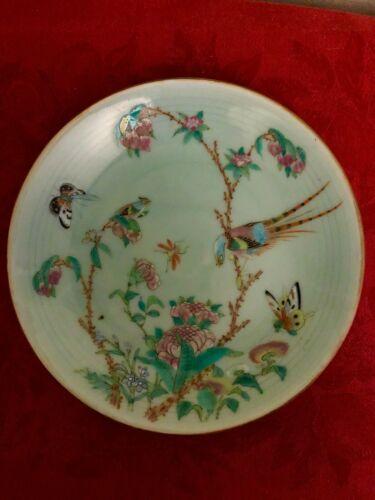 Antique, Chinese Tongzhi Nian Zhi Da Qing Fencai, Celadon Famille Rose Plate #3