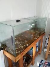 Fish tank massive! Armadale Armadale Area Preview