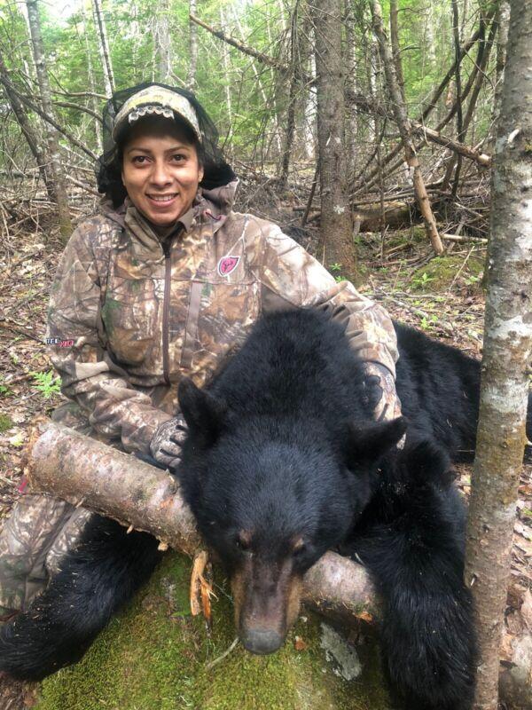 2022 New Brunswick Canada spring black bear hunting