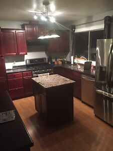 1-3 rooms available for rent