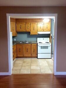 Two Bedroom Basement Apartment Goulds.