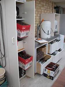 Home Brew Beer Kit Willagee Melville Area Preview