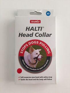 Dog muzzle and Head collar