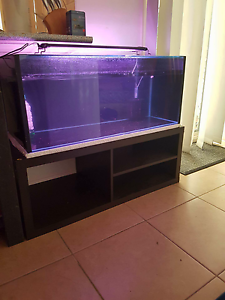3ft fish tank stand and canister filter Narangba Caboolture Area Preview