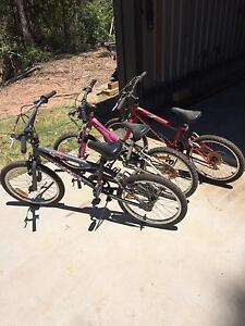 Kids bikes Pine Mountain Ipswich City Preview