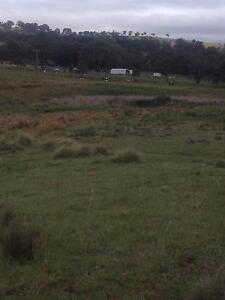 Possible Vendor Finance - 26.63 acres Northern Tablelands NSW Tenterfield Tenterfield Area Preview
