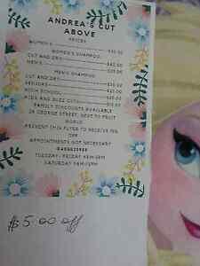 ANDREA NEEDS YOUR CUSTOM/GO GET YR DOO!!!/GO SAY HELLO!!! Mackay Mackay City Preview